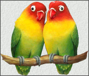 Painted Metal Lovebirds Wall Decor Hand Cut From Haitian Steel Drum 11 Quot X 12 Quot