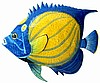 "Tropical Fish, Painted Metal Blue Angelfish Wall Hanging, Haitian Steel Drum Art - 22"" x 24"""