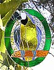 "Parrot Suncatcher - Blue & Gold Macaw Parrot Art - Tropical Stained Glass Design - 10"" x 12"""