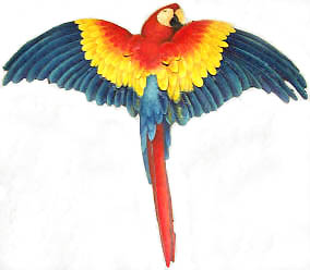 Painted Scarlet Macaw Parrot Metal Wall Hanging - Tropical Home Decor - Haitian Metal Art - 26""