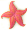 "Painted Metal Pink Shell Wall Hanging - Starfish, Coastal Wall Decor, Tropical Home Decor -14"" x 14"""